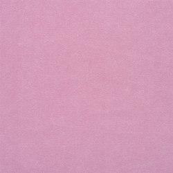 Canvas - Peony | Tejidos para cortinas | Designers Guild