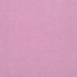 Canvas - Peony | Curtain fabrics | Designers Guild