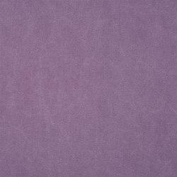 Canvas - Viola | Tejidos para cortinas | Designers Guild