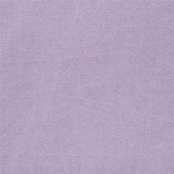 Canvas - Crocus | Tessuti tende | Designers Guild