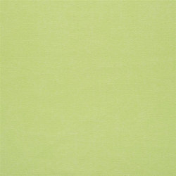 Canvas - Lime | Curtain fabrics | Designers Guild
