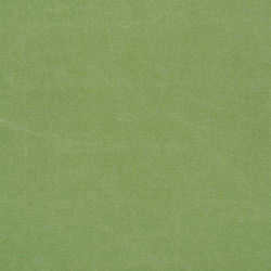 Canvas - Grass | Curtain fabrics | Designers Guild