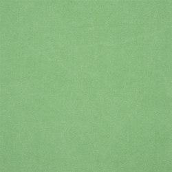 Canvas - Absinthe | Tissus pour rideaux | Designers Guild