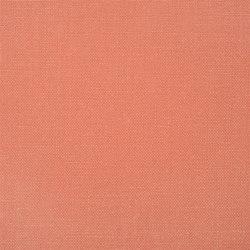 Conway - Coral | Tissus pour rideaux | Designers Guild