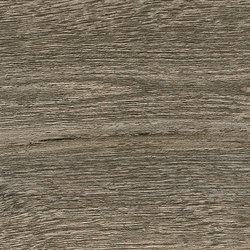 Bio Plank | Fumè 20x120 | Außenfliesen | Lea Ceramiche