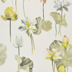 Nymphaea - Birch | Tessuti tende | Designers Guild