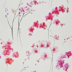 Orchidea - Schiaparelli | Curtain fabrics | Designers Guild