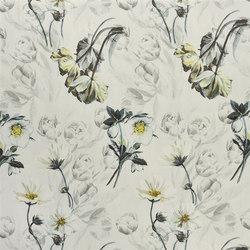 Pomander - Noir | Tissus pour rideaux | Designers Guild