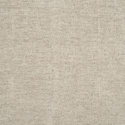 Riveau - Ash | Curtain fabrics | Designers Guild