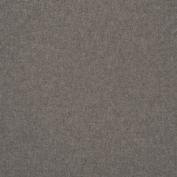 Rothesay - Moleskin | Curtain fabrics | Designers Guild