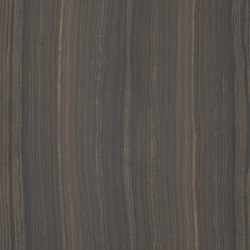 Marmoker travertino moka | Tiles | Casalgrande Padana
