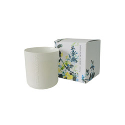 Candles & Diffusers - Wild Fig Candle | Candlesticks / Candleholder | Designers Guild