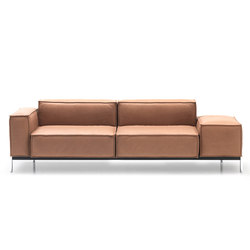 DS 21 | Loungesofas | de Sede
