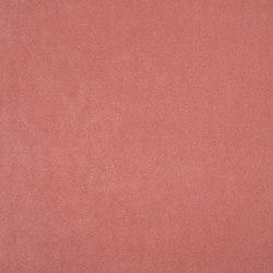 Arona - Blossom | Curtain fabrics | Designers Guild
