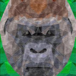Kong | Tappeti / Tappeti d'autore | Illulian