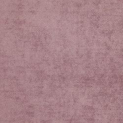 Velours Massimo 10625_48 | Drapery fabrics | NOBILIS