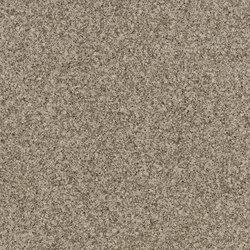 Classic Carlisle Gray | Compuesto mineral planchas | Cambria