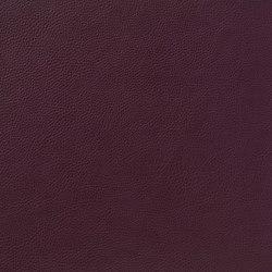 Fleur De Cuir 10566_46 | Faux leather | NOBILIS