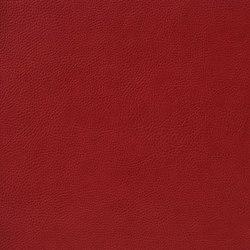 Fleur De Cuir 10566_50 | Faux leather | NOBILIS