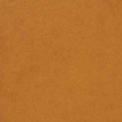 Fleur De Cuir 10566_55 | Faux leather | NOBILIS
