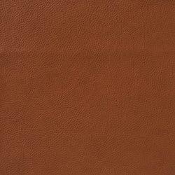 Fleur De Cuir 10566_57 | Faux leather | NOBILIS