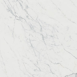 Marvel XL Calacatta | Slabs | Atlas Concorde