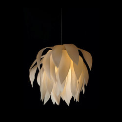 Magnolia 2919 | Pendant | Iluminación general | Fire Farm Lighting