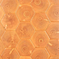 Fir End Grain Hexagon | Sols en bois | Kaswell Flooring Systems