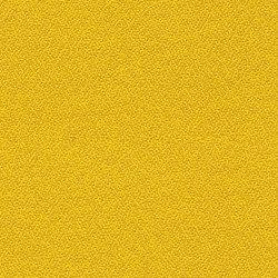 Lucia CS Kota | Screen fabrics | Camira Fabrics