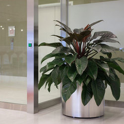 Universal Planter | Plant pots | Forms+Surfaces®