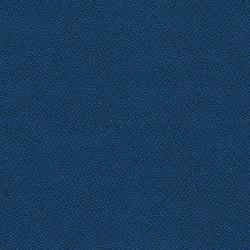 Xtreme CS Makili | Tissus | Camira Fabrics