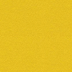 Xtreme CS Kota | Fabrics | Camira Fabrics