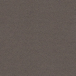 Xtreme CS Palu | Möbelbezugstoffe | Camira Fabrics