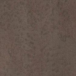 Raw 87.000 | Revestimientos de paredes / papeles pintados | Agena