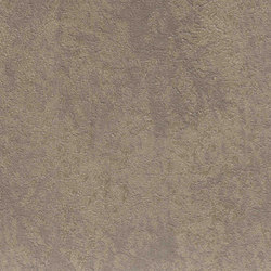 Raw 87.004 | Wall coverings / wallpapers | Agena