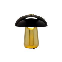 Ongo | Light satin bronze | General lighting | Contardi Lighting