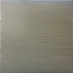 Serie Bicolor LR PO C grigio chiaro | Baldosas de cerámica | La Riggiola