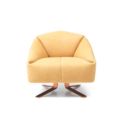 DS 373 | Lounge chairs | de Sede