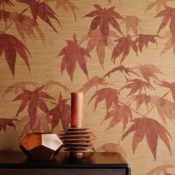Acer | Wall coverings / wallpapers | Zoffany