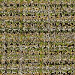 World Woven 895 Glen Weave | Dalles de moquette | Interface