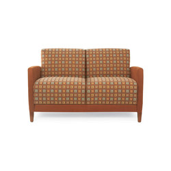 Facelift 3 Evolve Two Place Sofa | Divani | Trinity Furniture