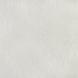 Paintable textured nonwoven wallpaper EDEM 379-60 | Wall coverings / wallpapers | e-Delux