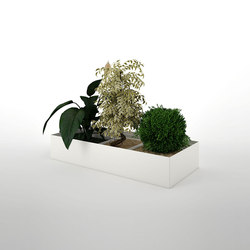 Primo Modular Elements | Plant and flower container unit | Pflanzen-Halter / -Ständer | Dieffebi