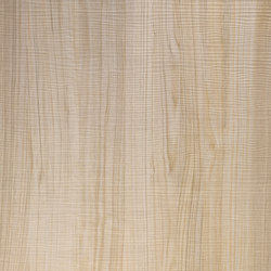 Wood - Wandpaneel WallFace Wood Collection 19029 | Kunststoffplatten/-paneele | e-Delux