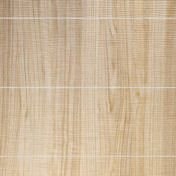 Wood - Wandpaneel WallFace Wood Collection 19101 | Kunststoff Platten | e-Delux