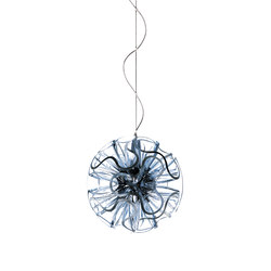 Coral Ball Suspension | Clear | Suspensions | QisDesign