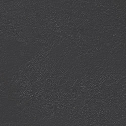 Core Negro Natural SK | Ceramic panels | INALCO