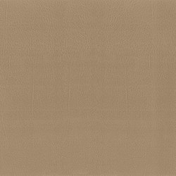 Como | Taupe | Cuero artificial | MI-Millennium International
