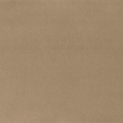 Bergamo | Taupe | Cuero artificial | MI-Millennium International
