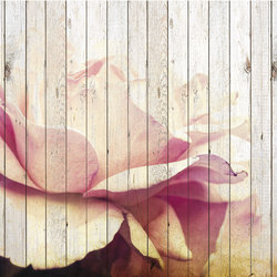 Flower | Wall decoration | Creativespace